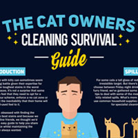 Cat Owners Cleaning Survival Guide