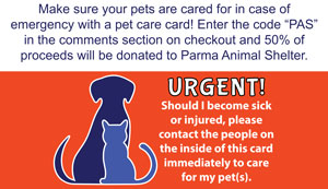 Pet Care Cards
