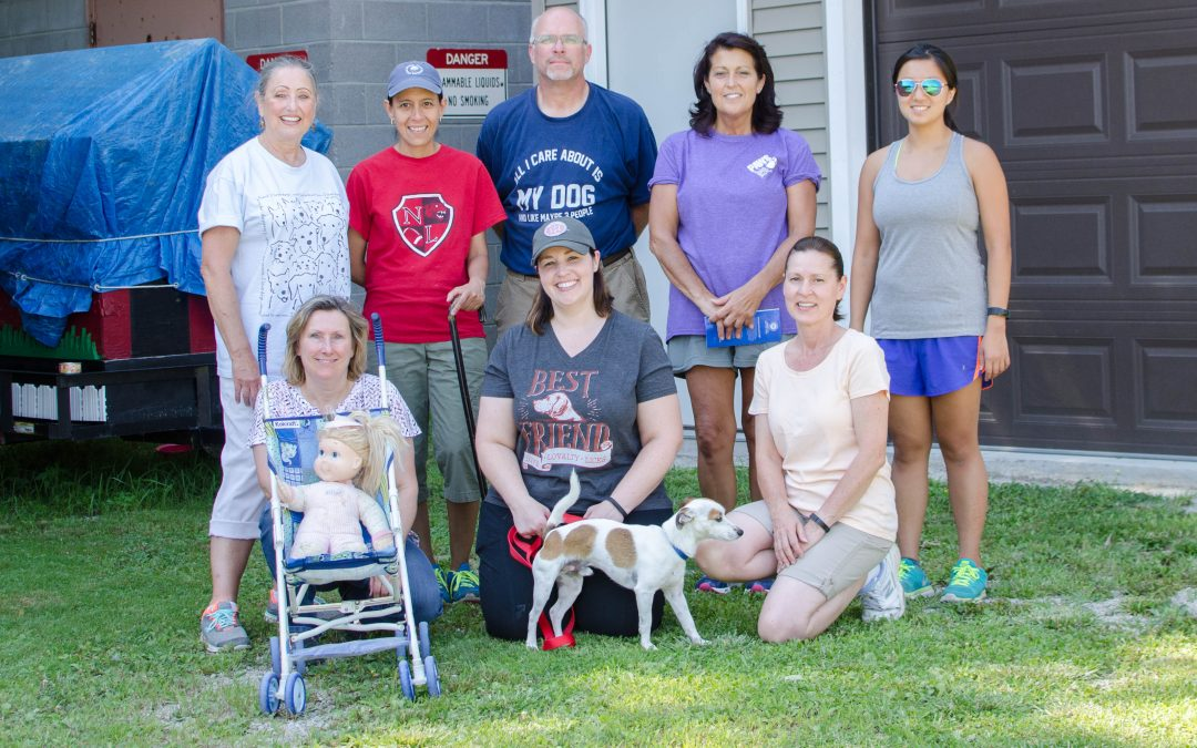 Volunteers participate in American Kennel Club Good Citizen dog training