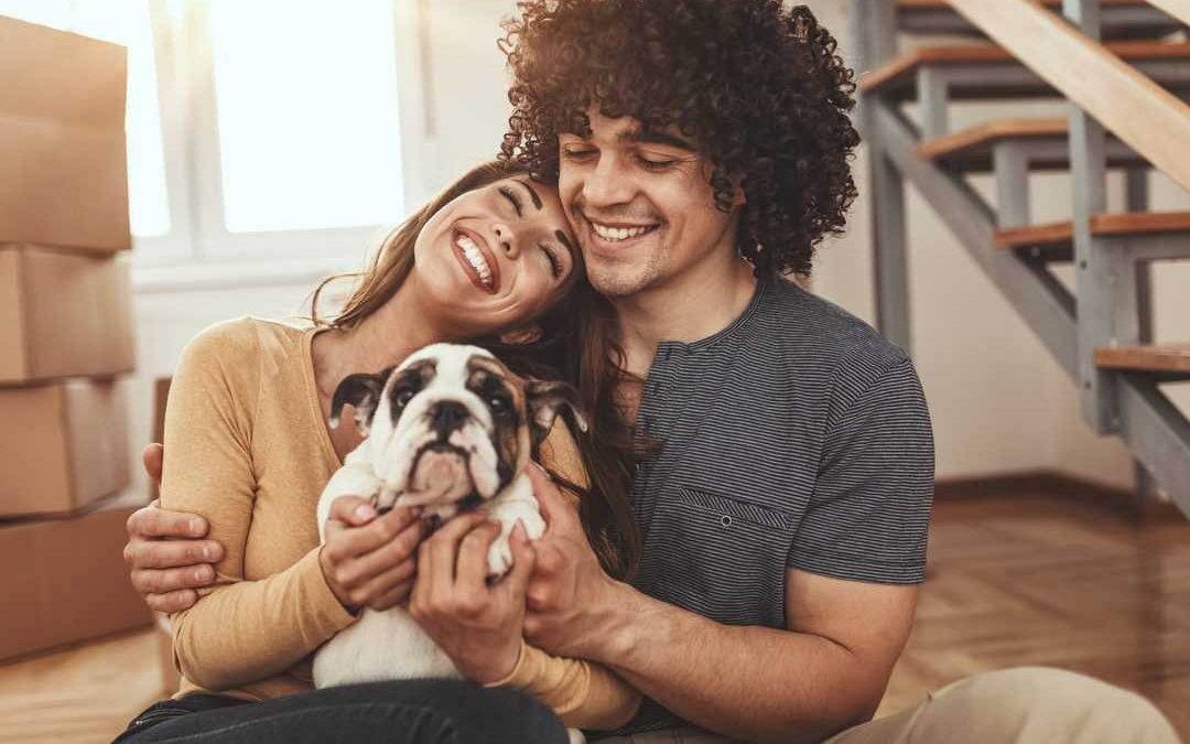 You were gifted a pet unexpectedly — now what?